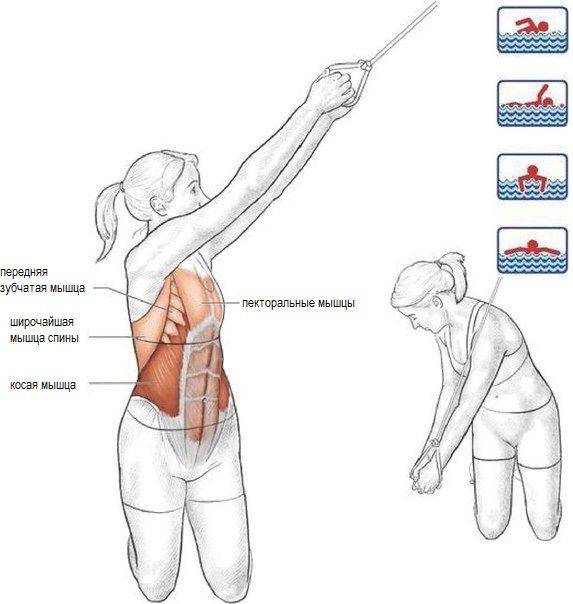Упражнение по силовой подготовке для пловцов на суше с эластичным ремне и удобными ручками